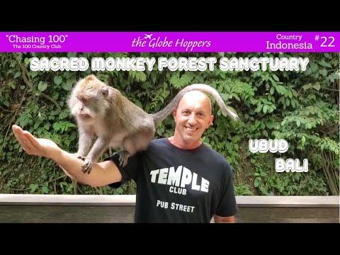 Sacred Monkey Forest Sanctuary in Ubud, Bali