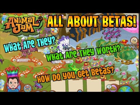 Animal Jam - ALL ABOUT BETAS! Which Are Real? How Do You Get & What They Worth? AJ Kingofshopkins