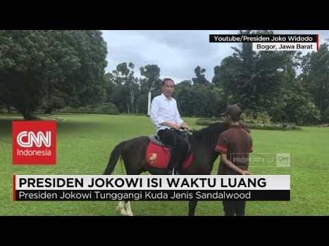 Hobi Baru Presiden Jokowi Saat di Istana Bogor