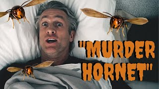 Murder Hornets  Wait, What? (original Song)