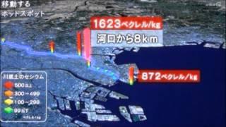 東京湾放射能汚染は福島原発20km圏内の海と同等 NHKスペシャル thumbnail