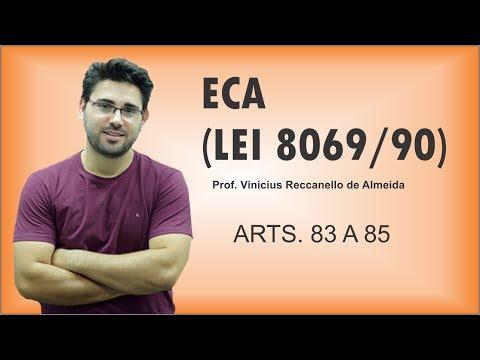 ECA - ARTS. 83 A 85 - VIAGEM DO MENOR