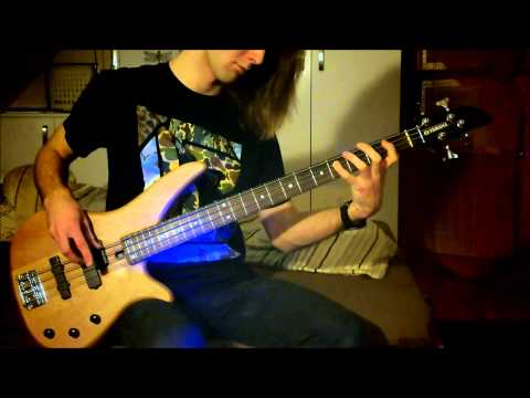 Red Hot Chili Peppers - Slow Cheetah (bass cover)