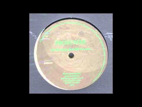 Prosumer - The Craze (Dub Mix)