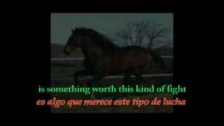 Amanda Marshall - Dark Horse (Lyrics Spanish + English)