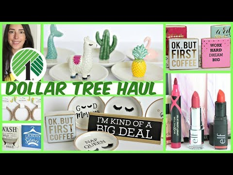 MUST WATCH DOLLAR TREE HAUL MAY 2019