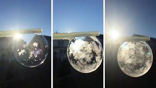 Stunning Frozen Bubble Looks Like Snowglobe