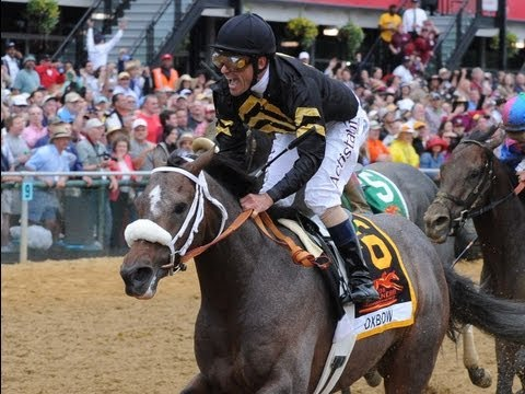 2013 Preakness Stakes Replay