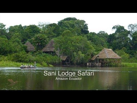 Sani Lodge Safari