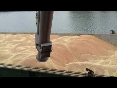 How to trim a Wheat cargo MV Swift