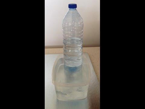 Distributeur D'eau Pour Chat