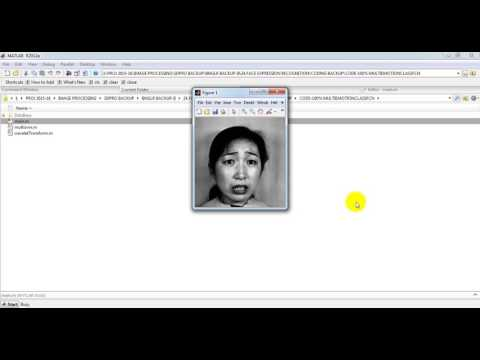facial expression recognition system||final year project training institute at sd pro solutions