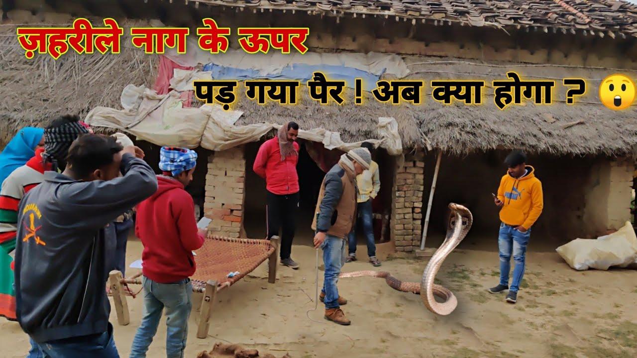 घर मे सफाई करते वक्त पैर के नीचे आ गया बहुत बड़ा जहरीला नाग| फिर उसके बाद क्या किया गांव वालों ने?