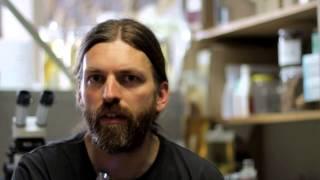 MEET THE SCIENTIST | Emmanuel Vreven, ichthyologist