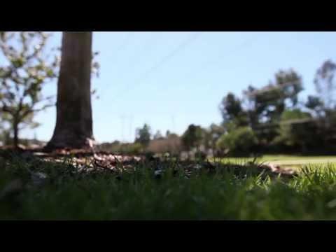 Carmel Mission Park | Carmel Valley Parks & Rec | Carmel Valley San Diego 92130