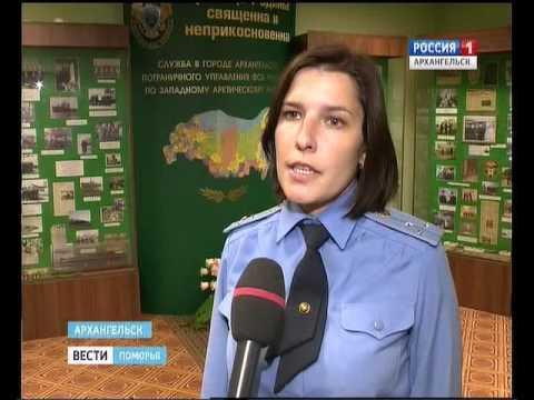 В Архангельске задержаны два уроженца Азербайджана