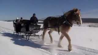 Horse Drawn Sleigh Rides Taylor-Made Deep Creek Vacations & Sales