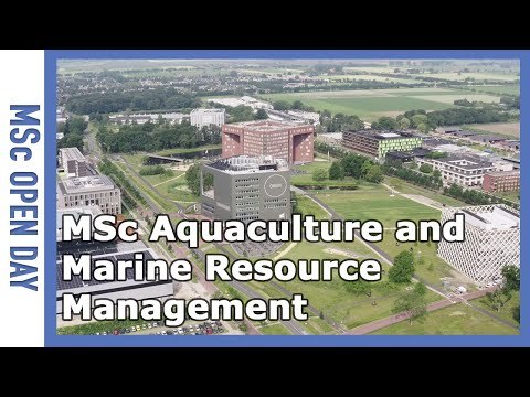 Study MSc Aquaculture and Marine Resource Management at Wageningen!   WURtube
