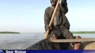 Lago Chade encolhe e peixes somem