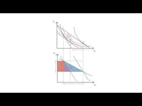 A.12 Paasche index   Consumption - Microeconomics