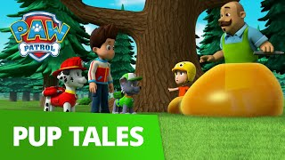 PAW Patrol | Pups Save the Mini Patrol | Rescue Episode | PAW Patrol Official & Friends!