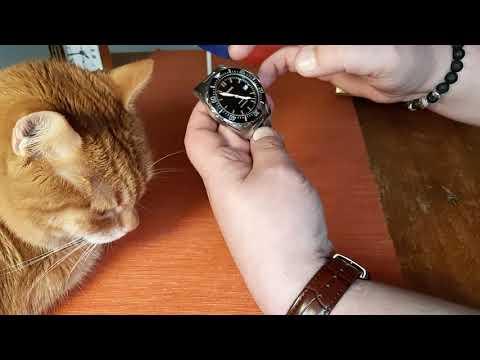 Часы Parnis с Aliexpress Divers 200m.