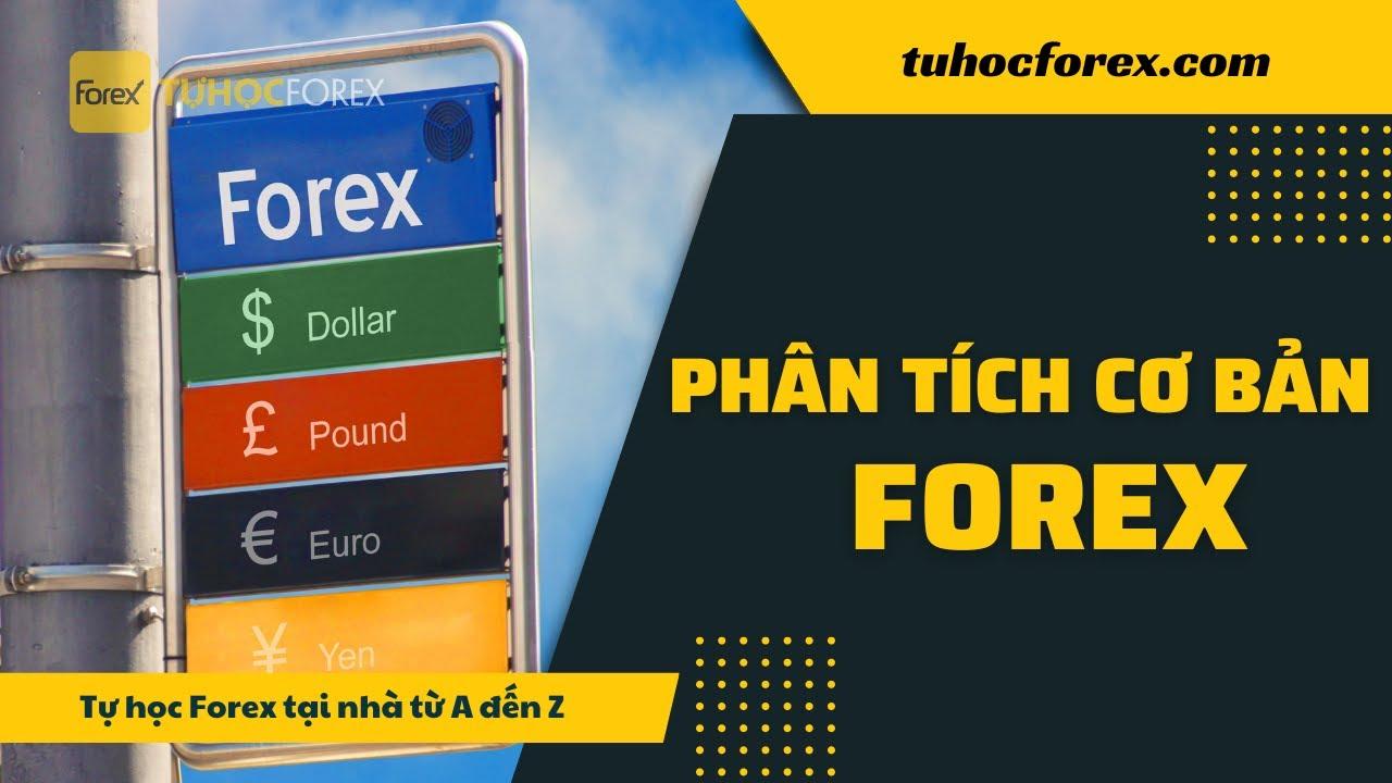 Forex Phần 6: Phân tích cơ bản forex là gì | Forex