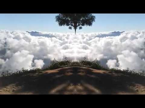 Meesapulimala - Munnar meesapulimala trekking