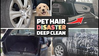 FILTHY CAR CLEANING Featuring Dog Hair Covered Carpets!!!