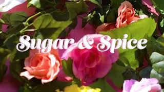 Rae' LaShae - Sugar & Spice (Official Video)
