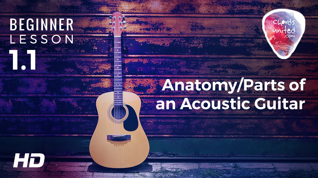 1.1 - Anatomy/Parts of an Acoustic Guitar - YouTube