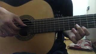 Nụ Hồng Mong Manh (Đã Từng Đau Lòng) (Classic Guitar Solo)