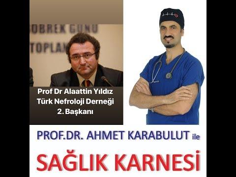 HER EVRESİYLE BÖBREK YETMEZLİĞİ - PROF DR ALAATTİN YILDIZ - PROF DR AHMET KARABULUT