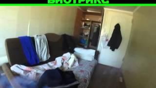 видео Уничтожение клопов в Подольске