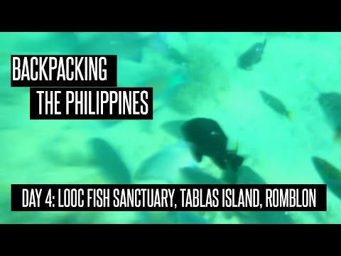 Looc Fish Sactuary, Tablas Island, Romblon: Backpacking the Philippines (Day 4)