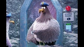 The Angry Birds Movie 2 Blu-ray & DVD November 12!