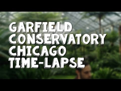 Garfield Park Conservatory Chicago Time Lapse Walk Through