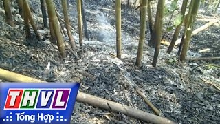 THVL | Người đưa tin 24G: Tàn lửa và những hậu quả khôn lường