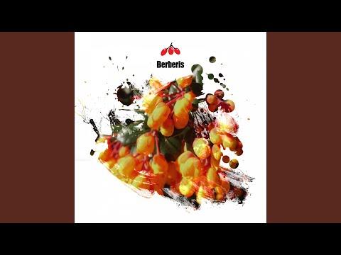 U (t) (Original Mix)