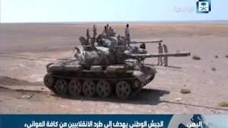 القوات اليمنية تواصل التقدم في منطقة باب المندب