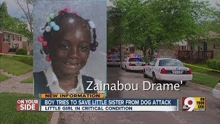 Boy tries to save little sister from dog attack
