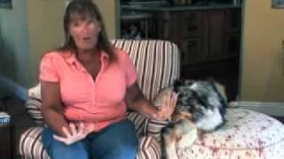 Perfect Dog Training System - Testimonial