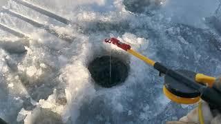 Рыбалка на Братском водохранилище 19 12 20