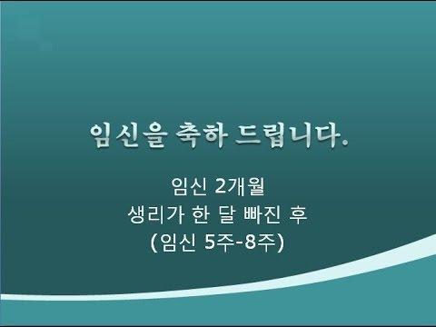 [박혜성의 태교특강] 임신주수별 변화와 주의