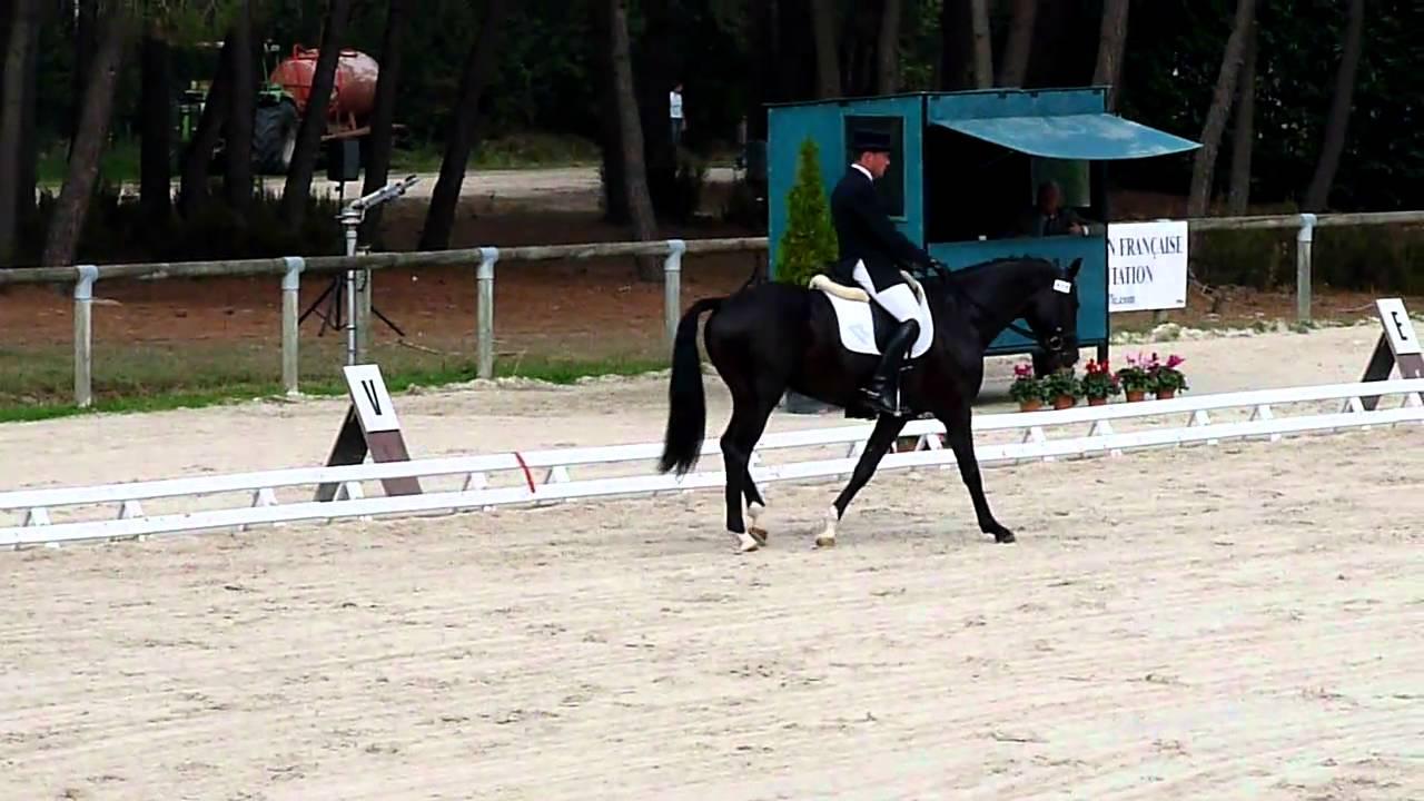 blacktime ria saumur championnat jeunes chevaux jean etienne suisse de sainte claire mov youtube. Black Bedroom Furniture Sets. Home Design Ideas