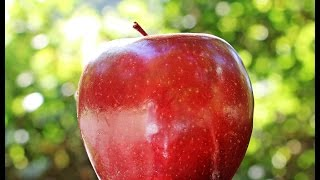 LEARN GERMAN Picture Dictionary  ► der Apfel ⇔ apple ◄ Vocabulary   Example Sentences