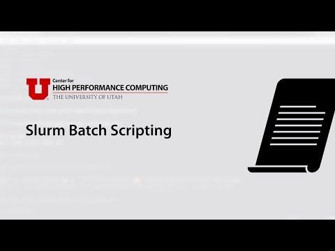 Slurm Batch Scripting