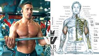 How To Build Muscle   20 BODYBUILDING EXERCISES
