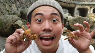 가재를 잡아서 튀겨먹어 보자! Eating fried Lobster