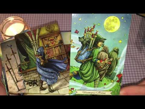 """Обзор на колоду карт Таро """"Everyday Witch"""" или  Повседневное Таро Ведьмы"""